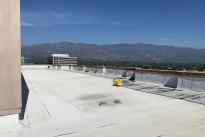 206. Rooftop