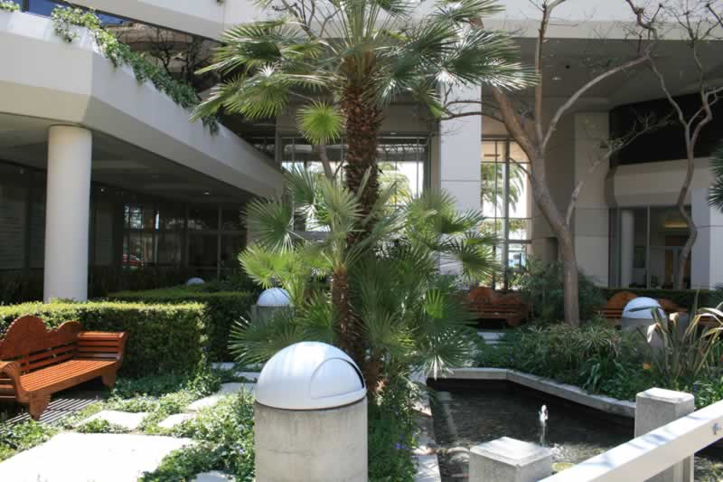 20. Interior Plaza