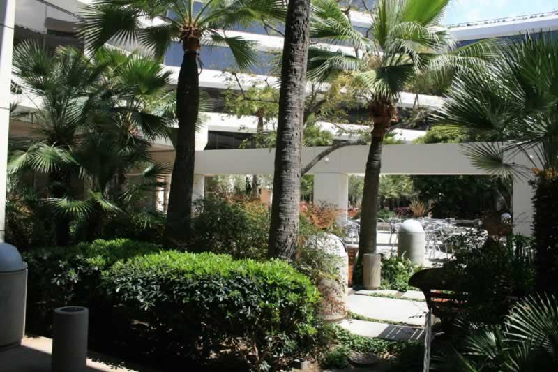 19. Interior Plaza