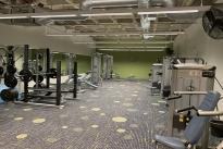 91. G level Gym