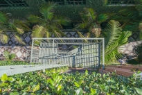 15. Courtyard