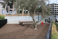 47. Dog Park