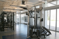 26. Gym
