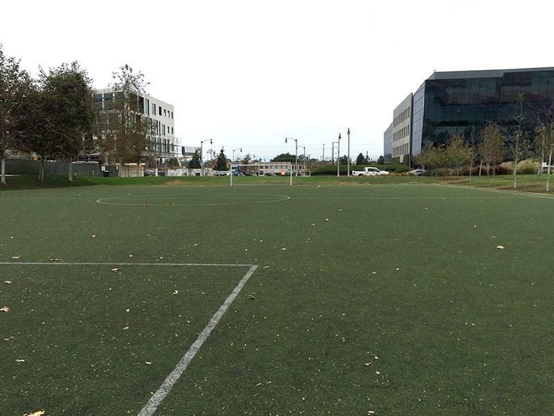 56. Soccer Field