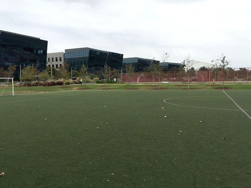 58. Soccer Field