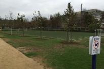 52. Soccer Field