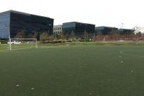 60. Soccer Field