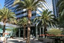 1. Exterior Plaza
