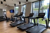 36. Gym