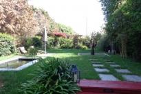 31. Backyard
