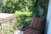 29. Backyard