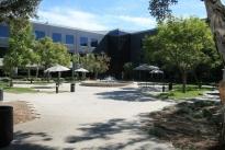 24. Courtyard