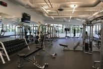 56. 1240 Bldg. Gym