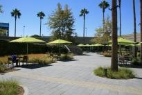 135. Cafeteria Plaza