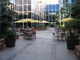 Maple Plaza