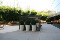 11. Lower Plaza
