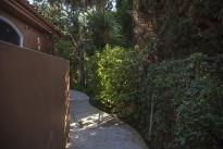 81. Backyard