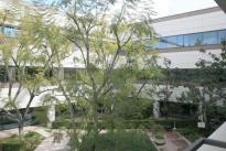 11. Plaza